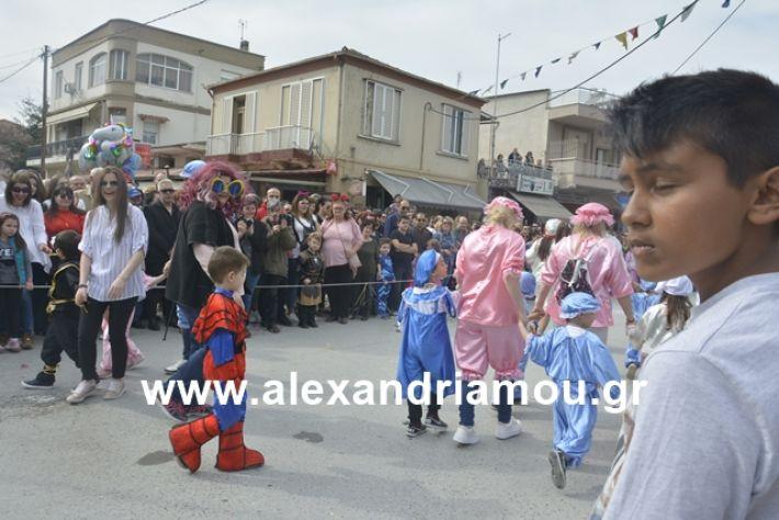 alexandriamou.gr_meliki192024