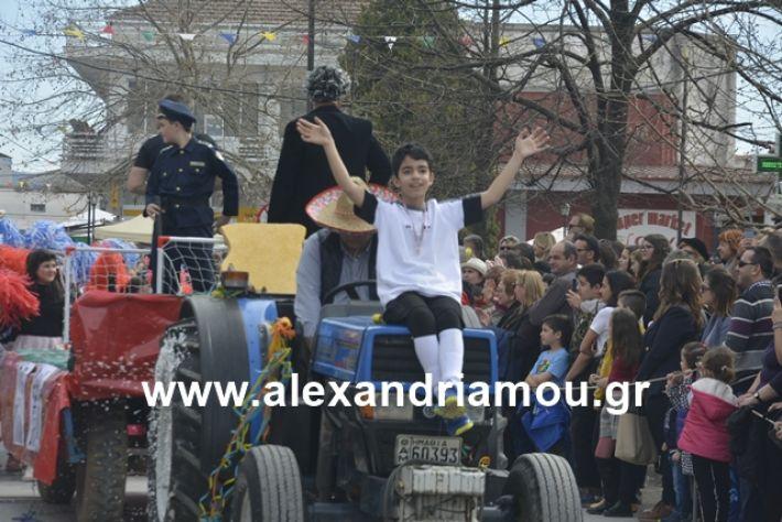 alexandriamou.gr_meliki192027