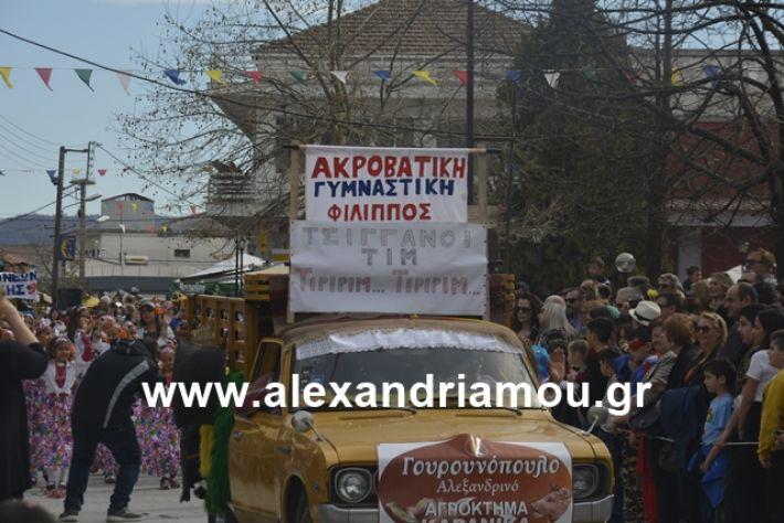 alexandriamou.gr_meliki192041