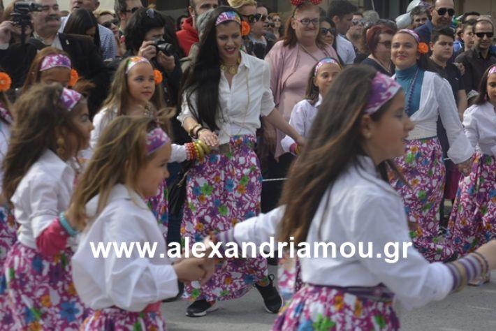 alexandriamou.gr_meliki192050