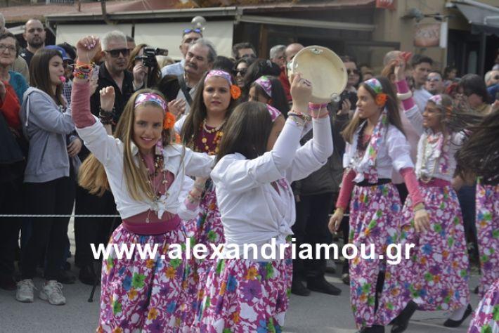 alexandriamou.gr_meliki192056