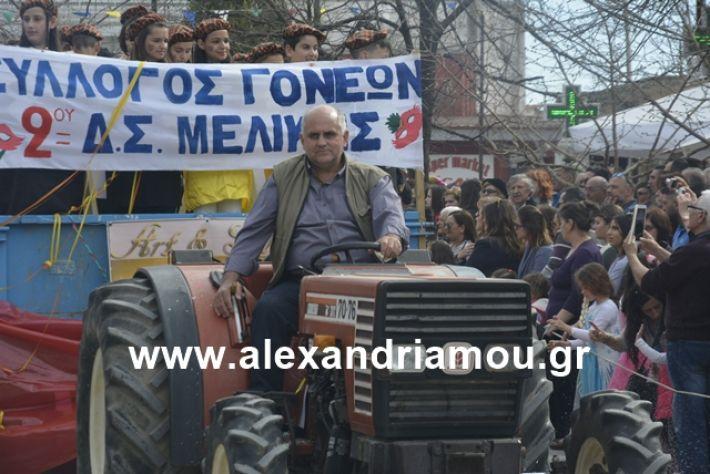 alexandriamou.gr_meliki192063