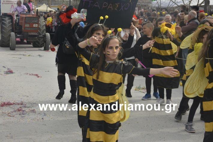 alexandriamou.gr_meliki192127