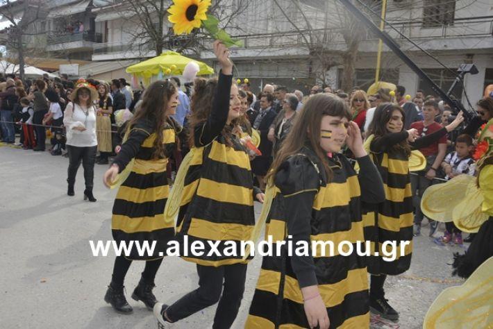 alexandriamou.gr_meliki192133