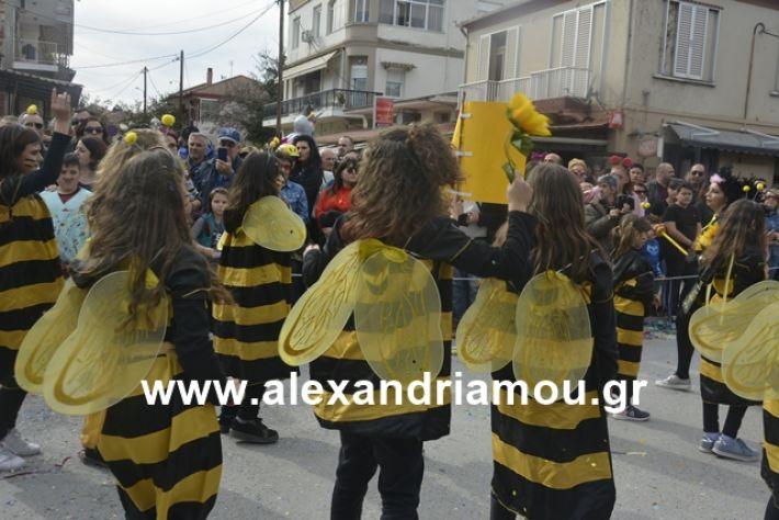 alexandriamou.gr_meliki192134