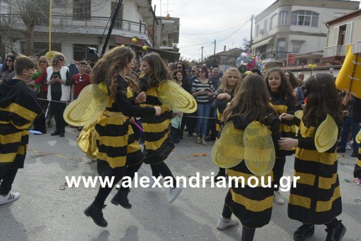 alexandriamou.gr_meliki192135