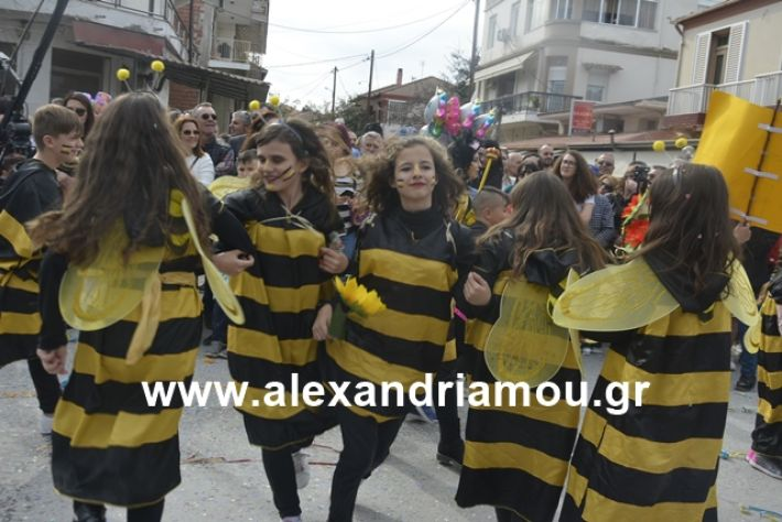 alexandriamou.gr_meliki192136