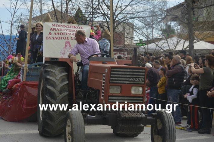 alexandriamou.gr_meliki192140
