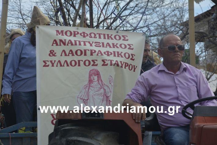 alexandriamou.gr_meliki192141