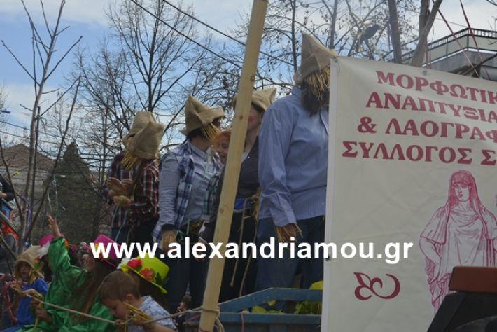 alexandriamou.gr_meliki192142
