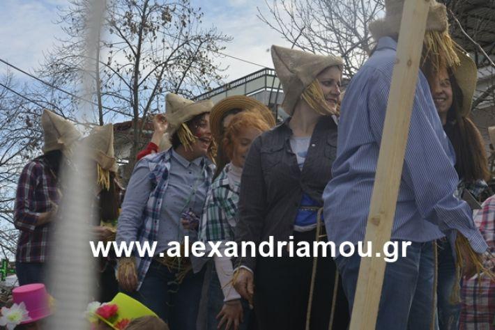 alexandriamou.gr_meliki192143