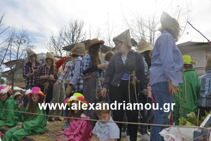 alexandriamou.gr_meliki192144