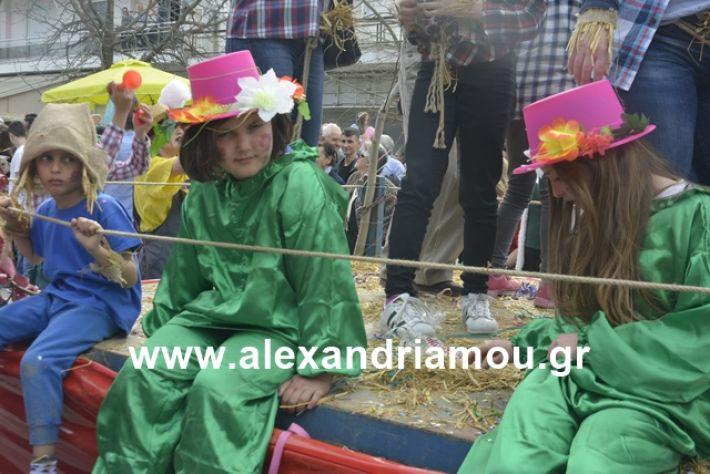 alexandriamou.gr_meliki192147