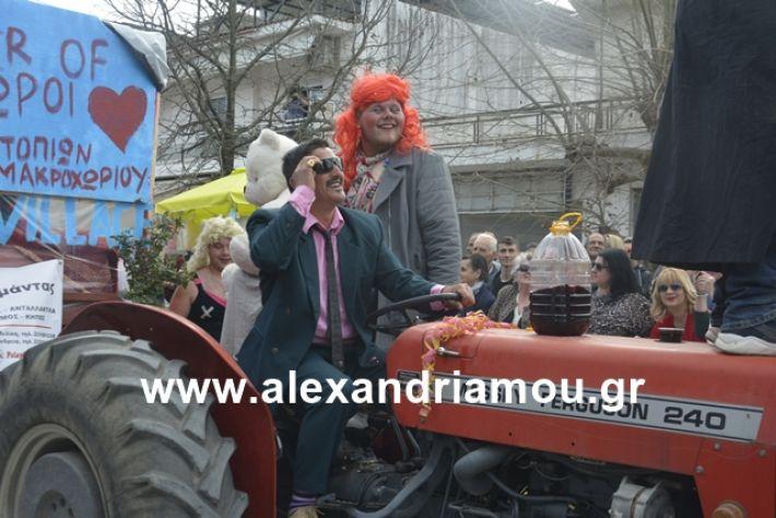 alexandriamou.gr_meliki192153