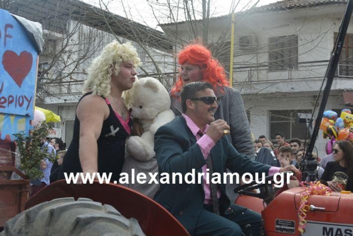 alexandriamou.gr_meliki192154