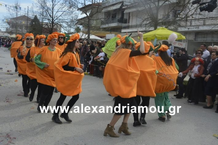 alexandriamou.gr_meliki192199