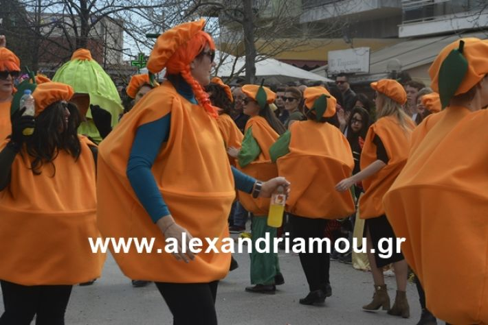 alexandriamou.gr_meliki192202
