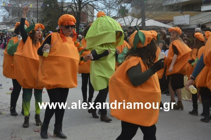 alexandriamou.gr_meliki192203