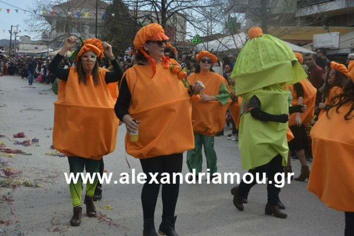 alexandriamou.gr_meliki192204