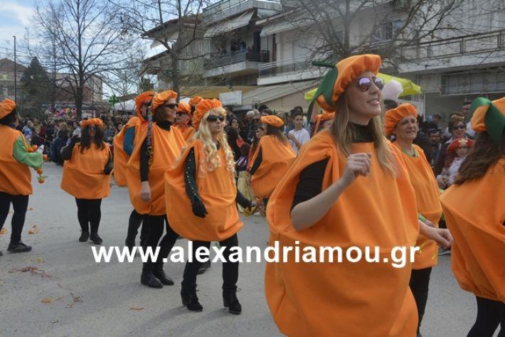 alexandriamou.gr_meliki192208