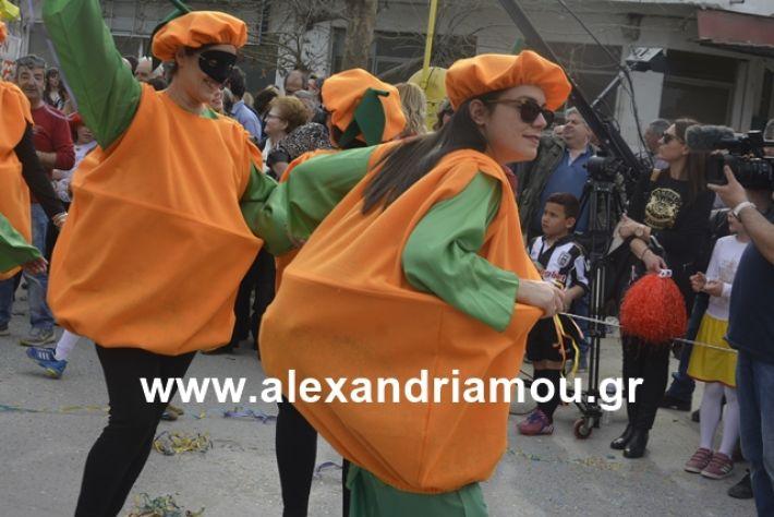alexandriamou.gr_meliki192213