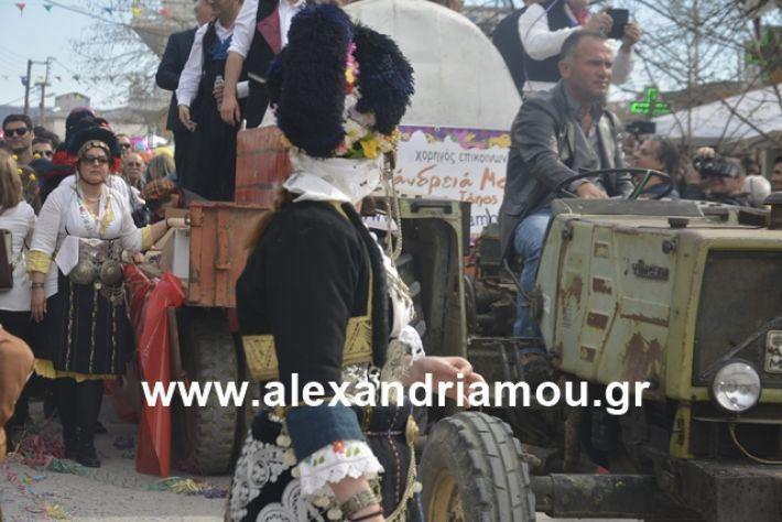 alexandriamou.gr_meliki192217