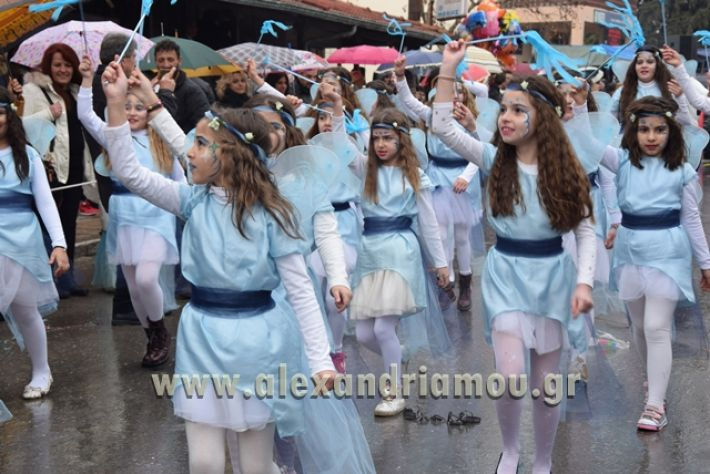 alexandriamou.gr_melikikarnavali18128