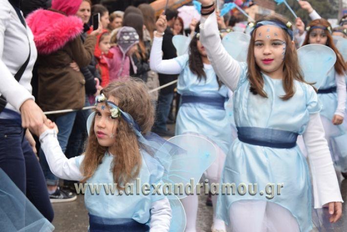 alexandriamou.gr_melikikarnavali18129