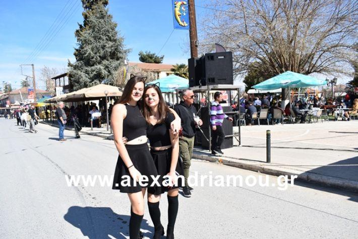 alexandriamou.gr_meliki_karnaval199019