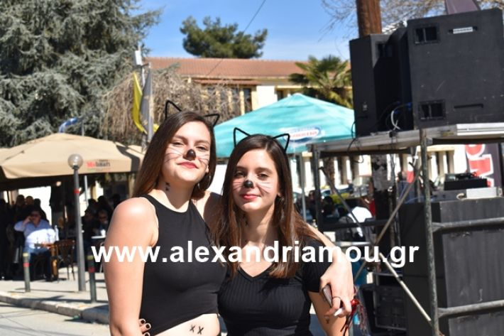 alexandriamou.gr_meliki_karnaval199020