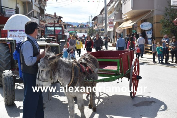 alexandriamou.gr_meliki_karnaval199043
