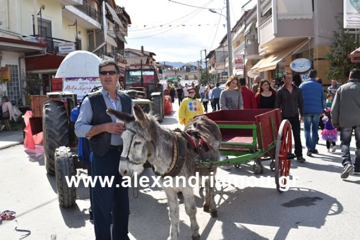 alexandriamou.gr_meliki_karnaval199044
