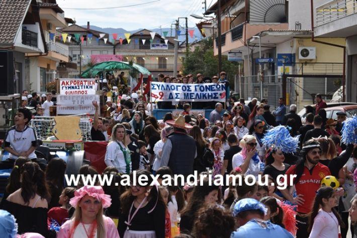 alexandriamou.gr_meliki_karnaval199066