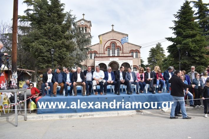 alexandriamou.gr_meliki_karnaval199086