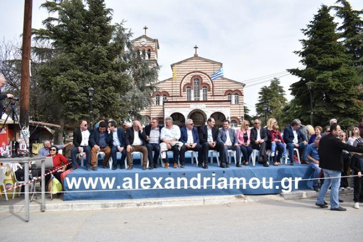 alexandriamou.gr_meliki_karnaval199087
