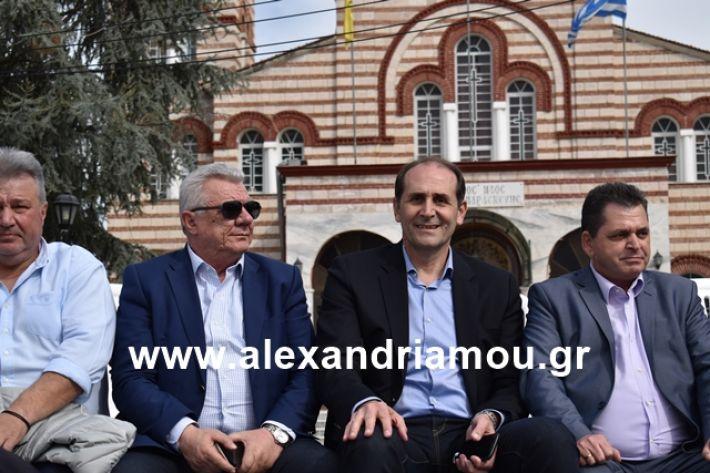 alexandriamou.gr_meliki_karnaval199089