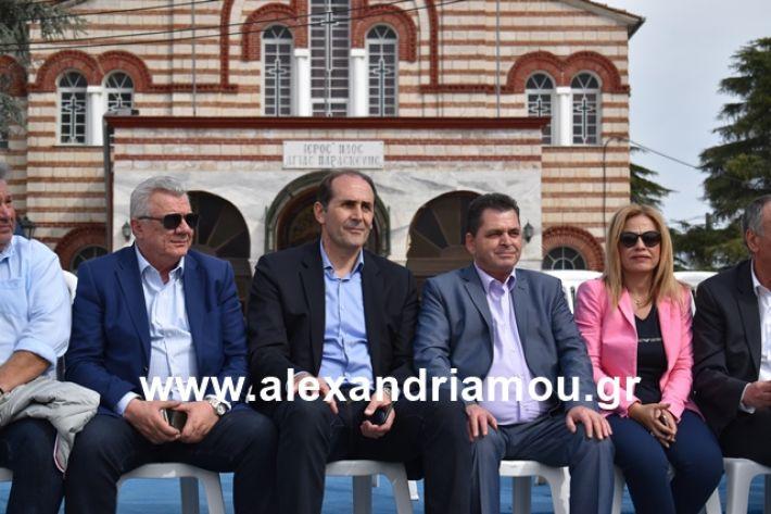 alexandriamou.gr_meliki_karnaval199093