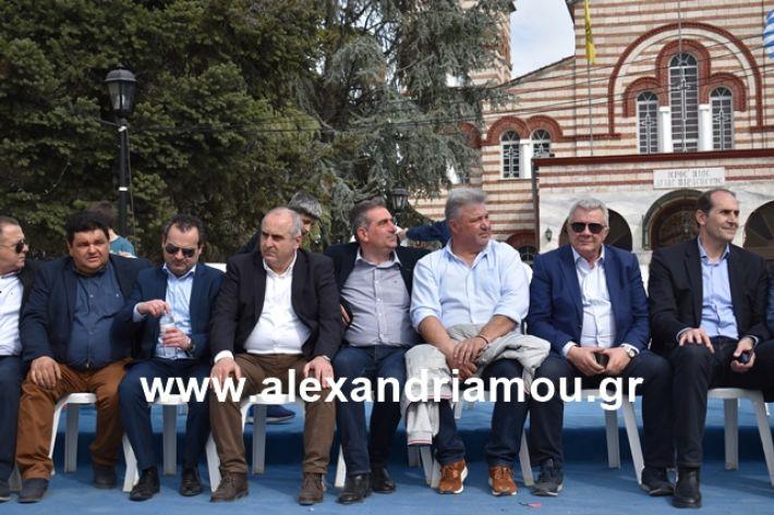 alexandriamou.gr_meliki_karnaval199094