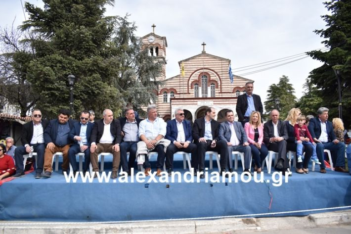 alexandriamou.gr_meliki_karnaval199096