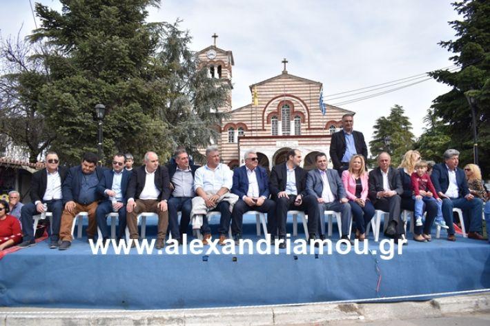 alexandriamou.gr_meliki_karnaval199097