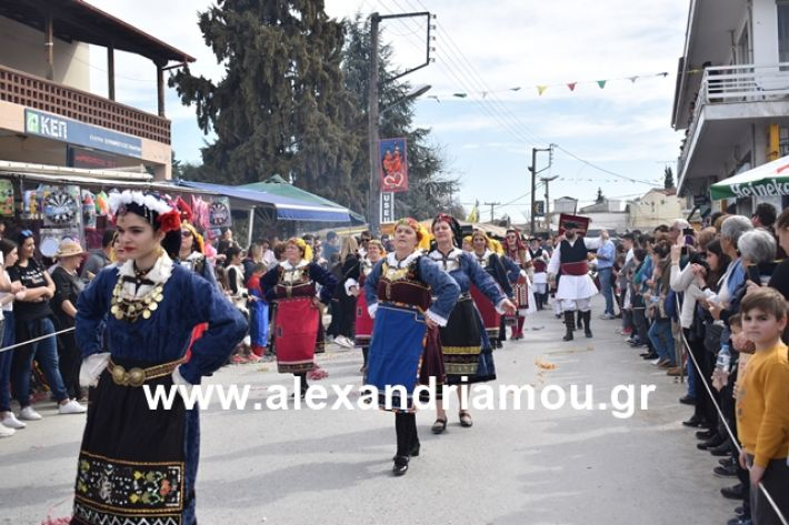 alexandriamou.gr_meliki_karnaval199106