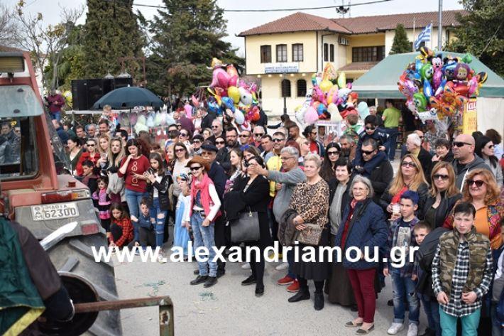 alexandriamou.gr_meliki_karnaval199124