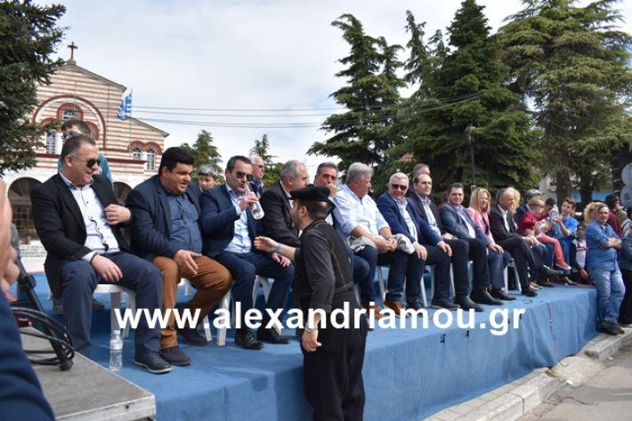 alexandriamou.gr_meliki_karnaval199149