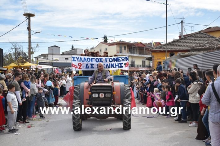 alexandriamou.gr_meliki_karnaval199170