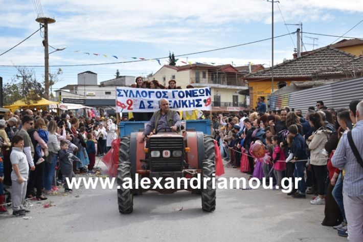 alexandriamou.gr_meliki_karnaval199171