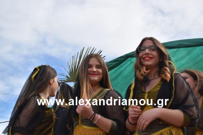 alexandriamou.gr_meliki_karnaval199190