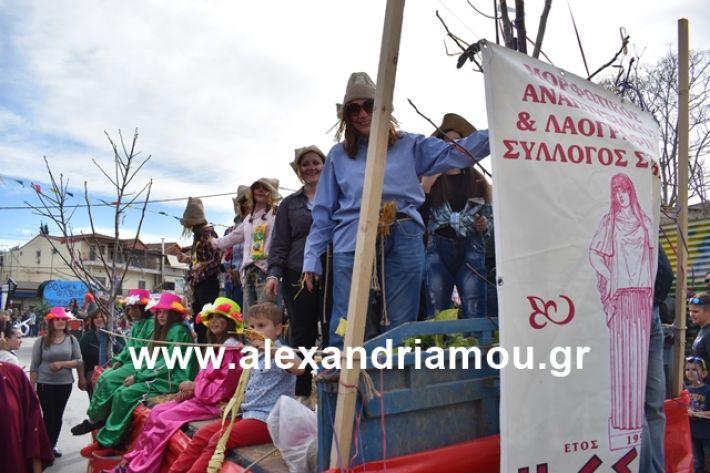 alexandriamou.gr_meliki_karnaval199213