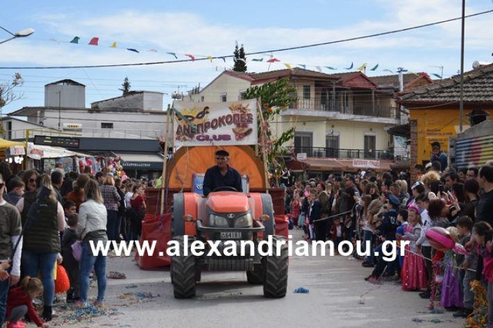alexandriamou.gr_meliki_karnaval199231