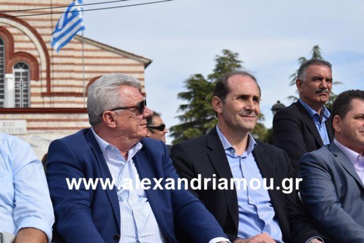 alexandriamou.gr_meliki_karnaval199260