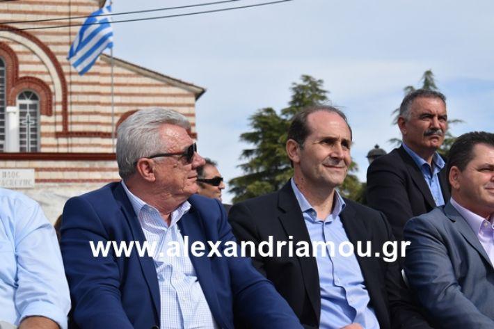 alexandriamou.gr_meliki_karnaval199261